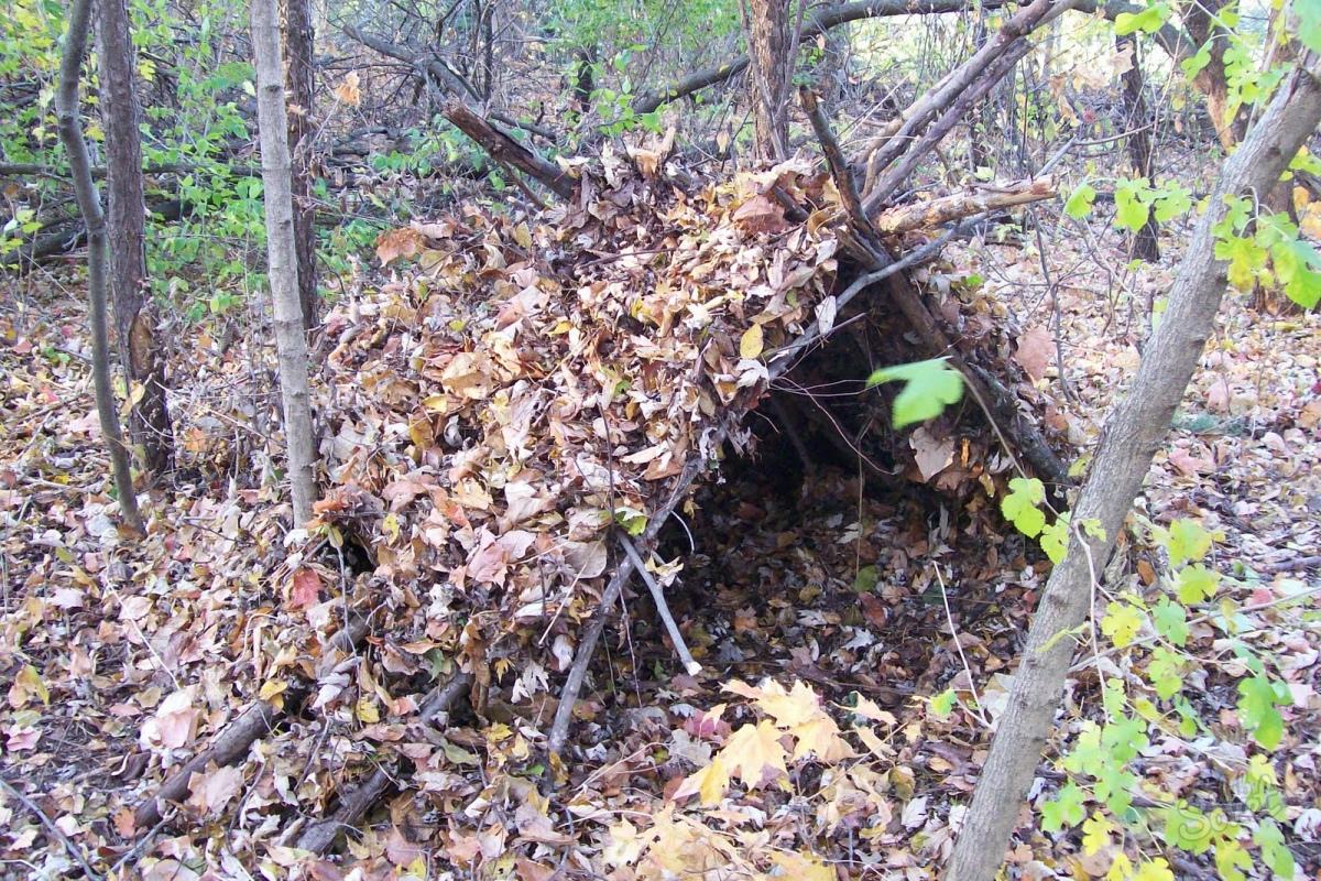 Самодельный шалаш в лесу своими руками 94