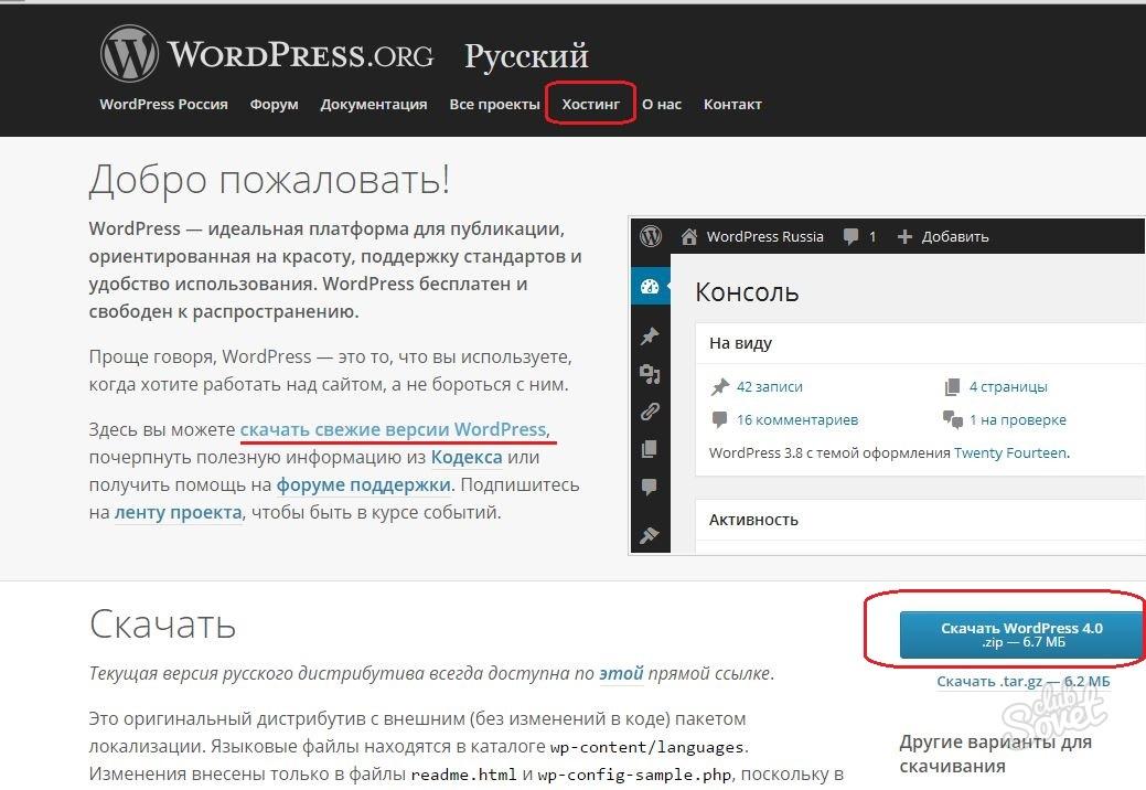 Как в wordpress сделать форум