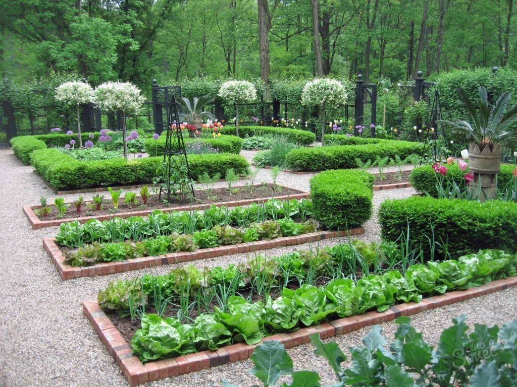 Как сделать сад из огорода 339