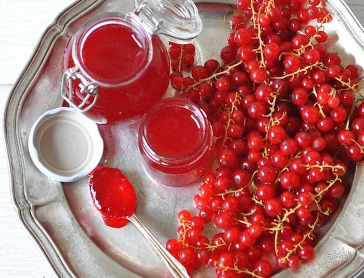 Варенье из красной смородины. Красная смородина: рецепты приготовления варенья