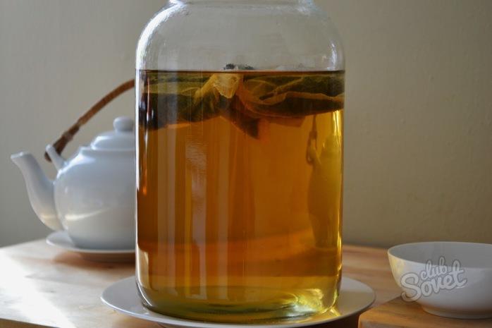 Чайный гриб как ухаживать