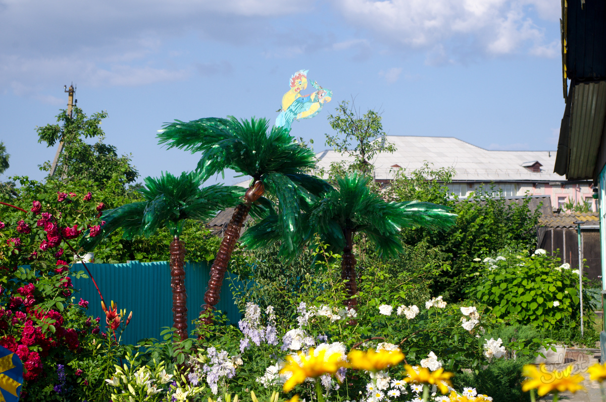 Пальма на даче своими руками
