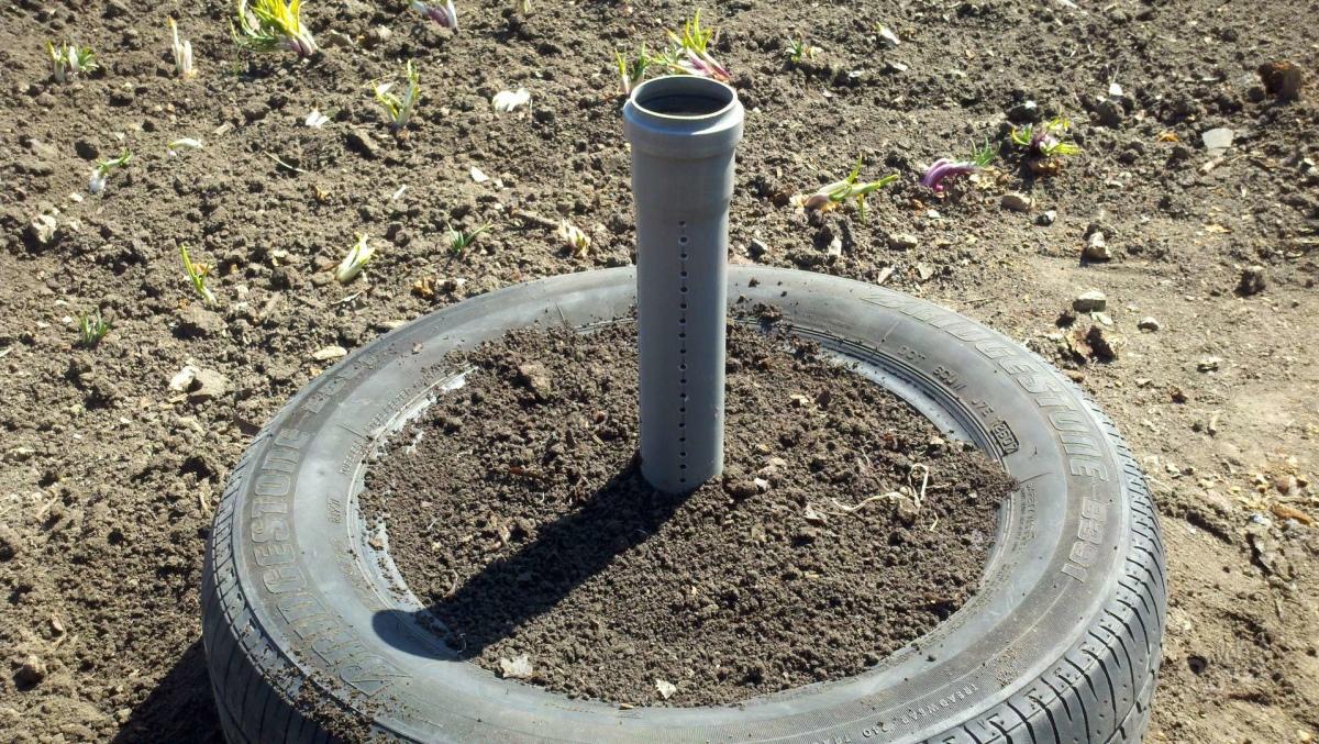 Выращивание клубники в шинах вертикально 54