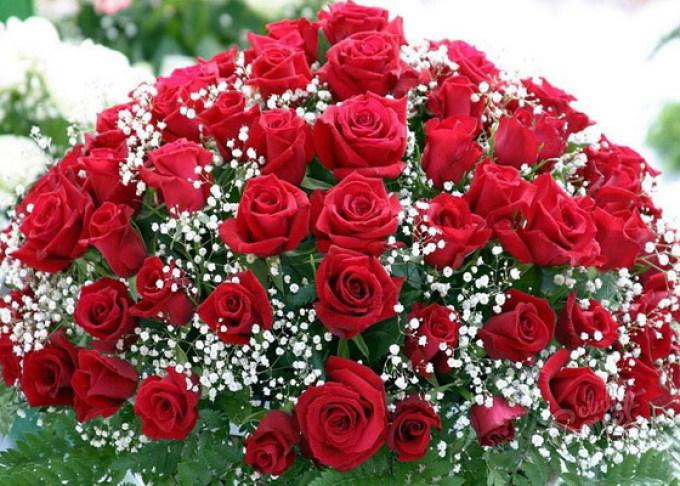 Букет из роз на открытку