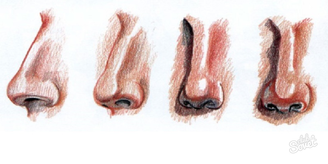 как нарисовать нос девушки: