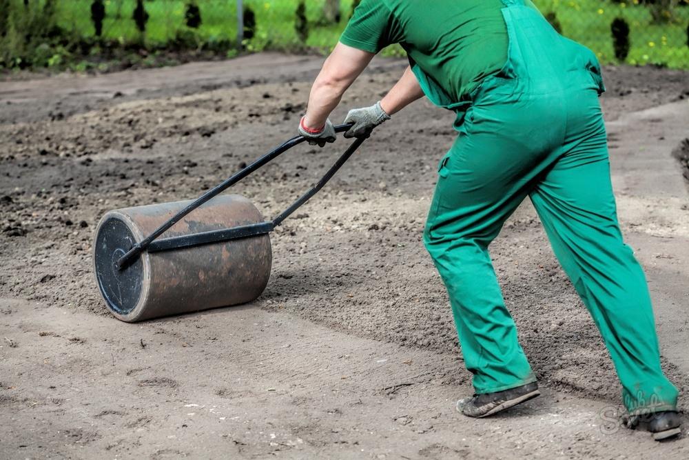 газонная трава спортивная как сажать инструкция