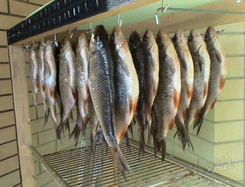 Как своими руками сделать сушилку для рыбы своими руками