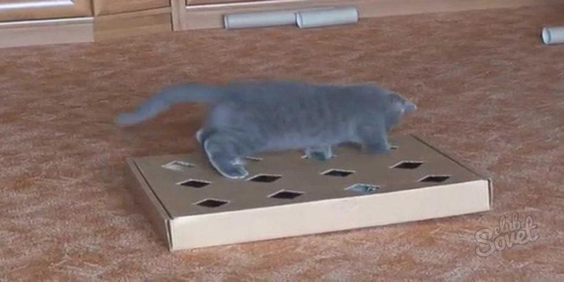 Игрушки из подручных материалов для кошек