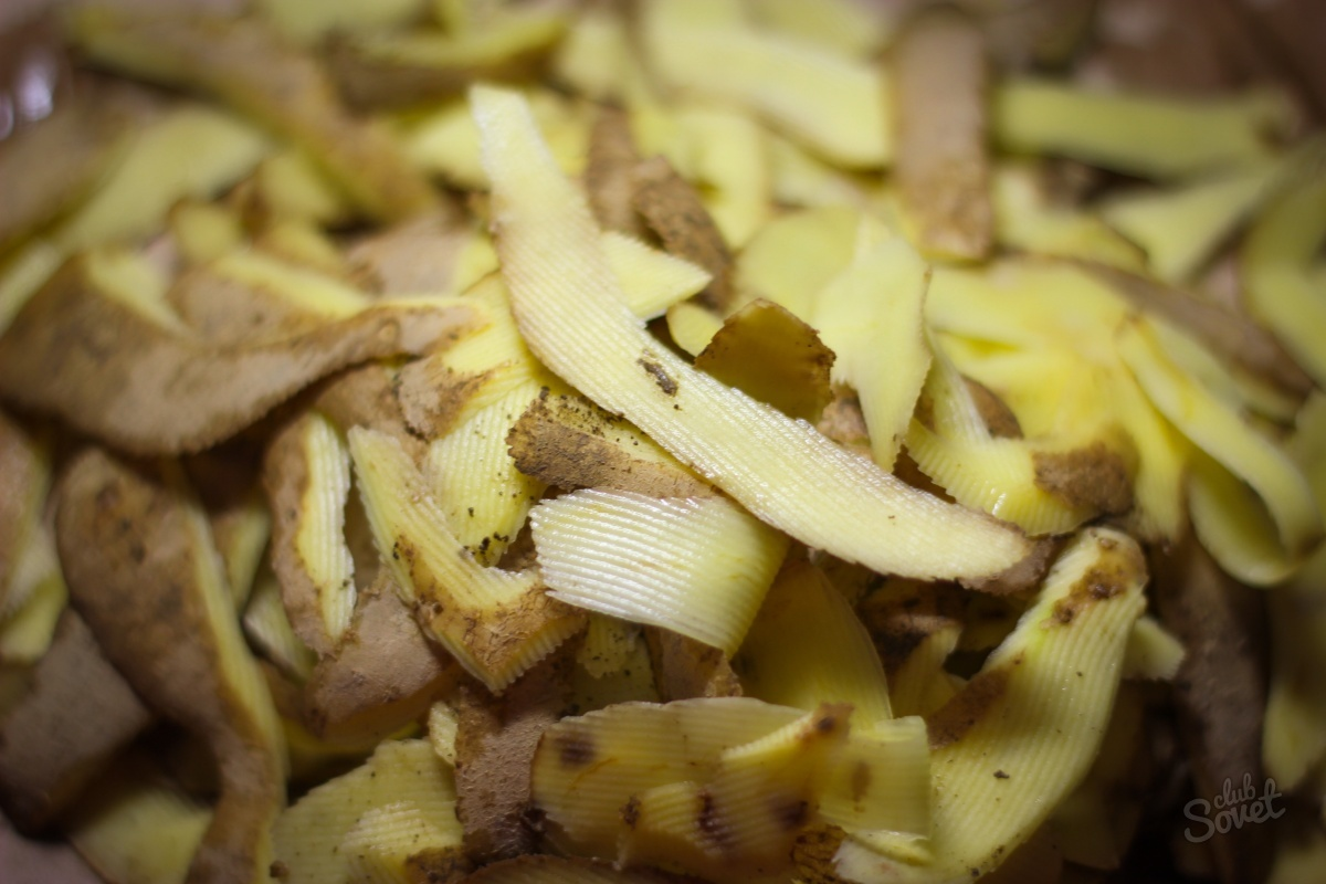 Картофельные очистки как удобрение как приготовить