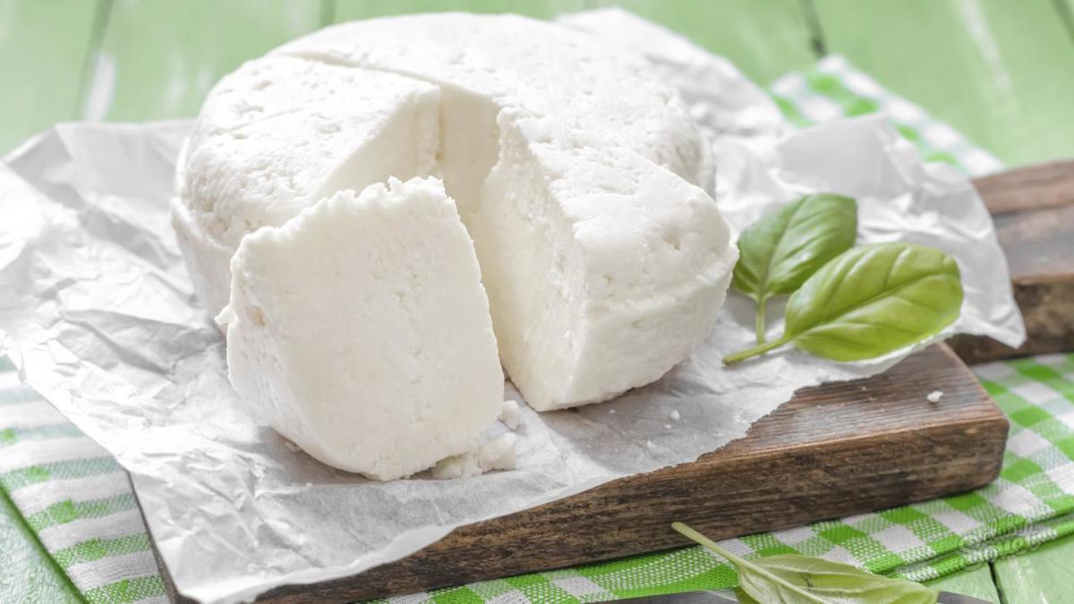 Закваска на сыр в домашних условиях из желудка