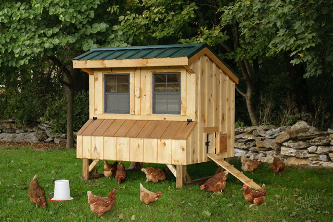 Как построить сарай для куриц своими руками