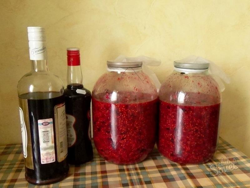 Вино из ягод черной смородины в домашних условиях 704