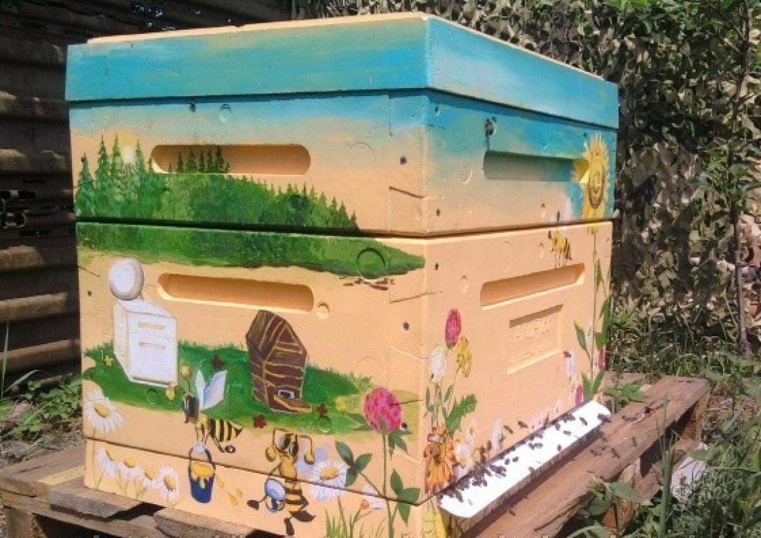 Ульи для пчел своими руками из пенополистирола