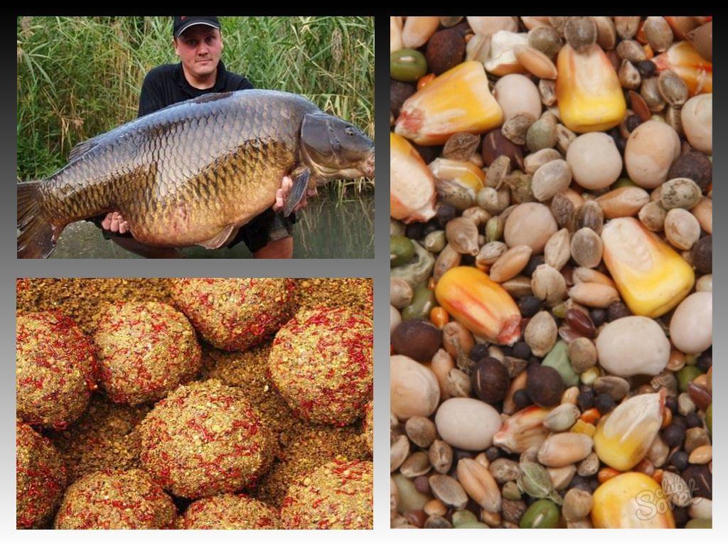 на какую приманку ловят рыбу в марте