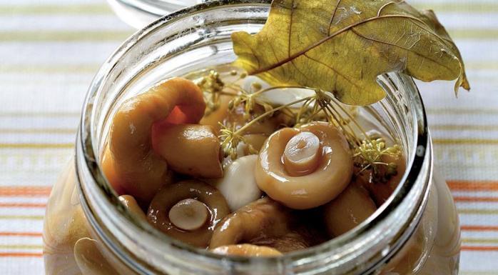 Рецепты засолки или маринования груздей