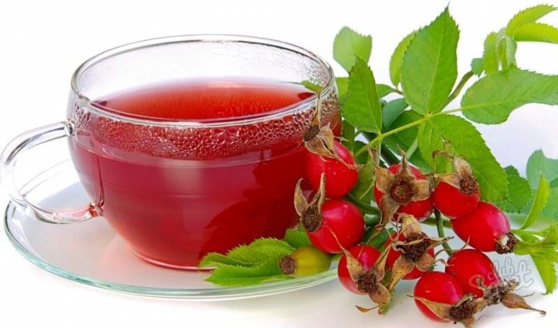 Сохранение витаминов шиповника при заваривании его в термосе