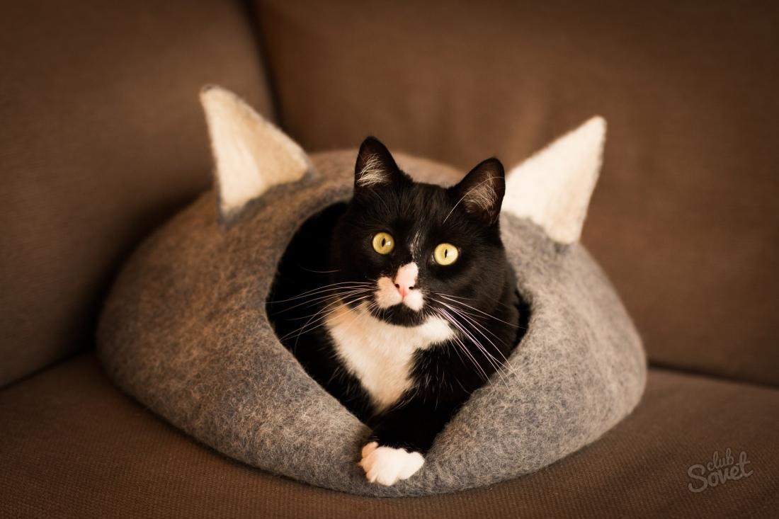 Картинки по запросу домик для кошки