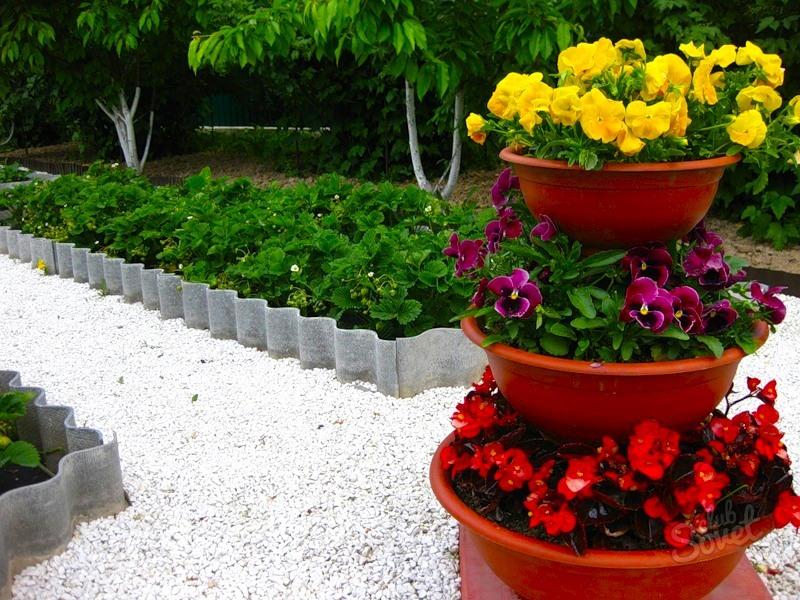 Фото красивых цветочных клумб на даче своими руками 71