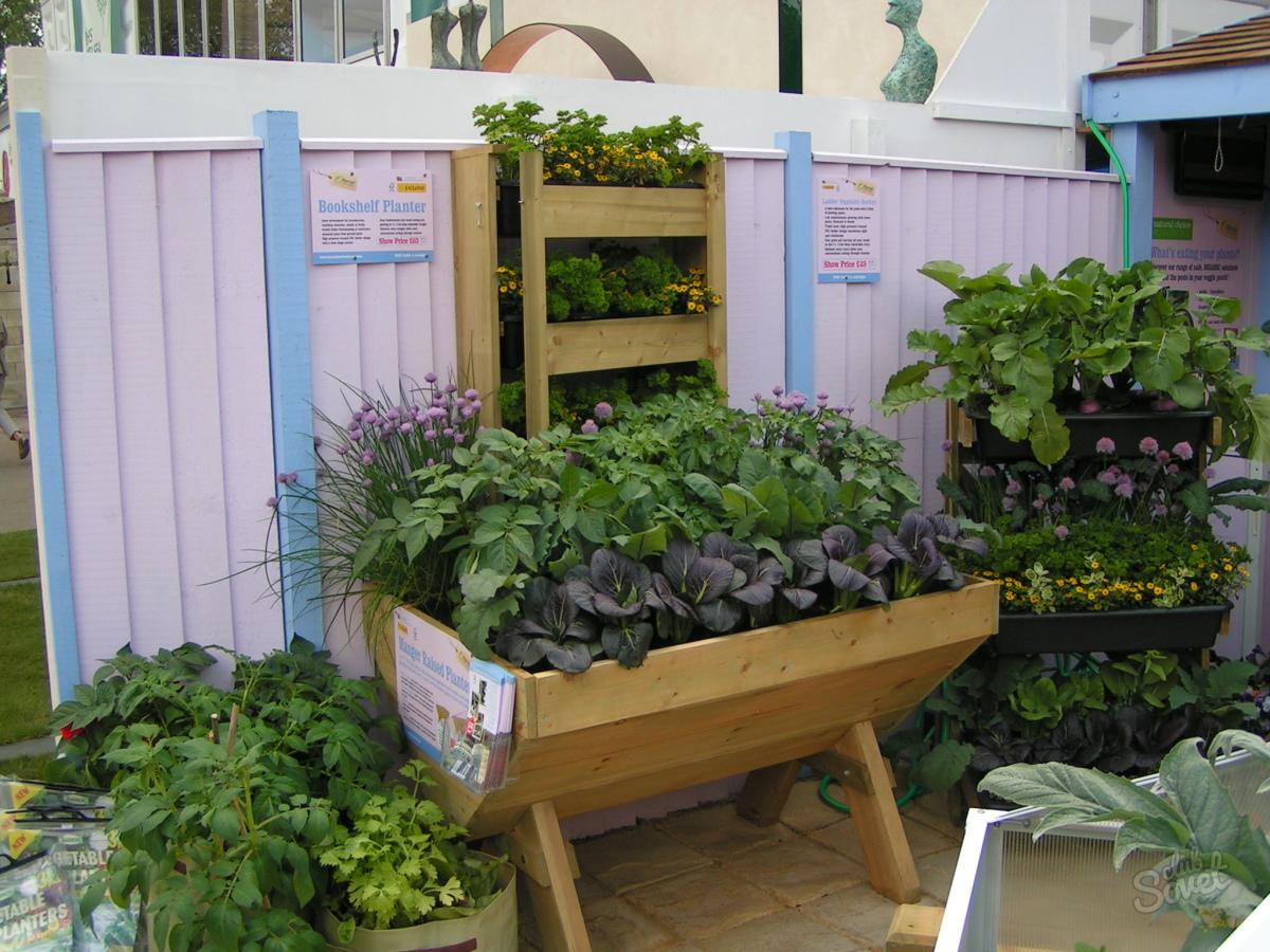 Ящики для выращивания овощей своими руками