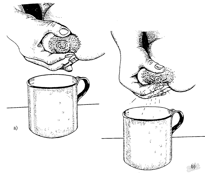 Как сделать чтоб молоко быстрее пришло молоко