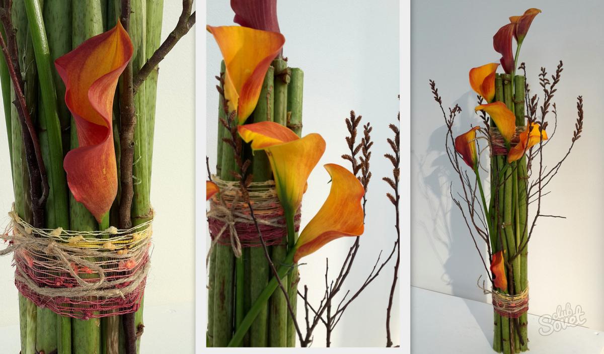 Какие цветы дарят мужчинам на 50 лет