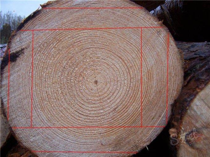 Программу для распила бревен дровосек