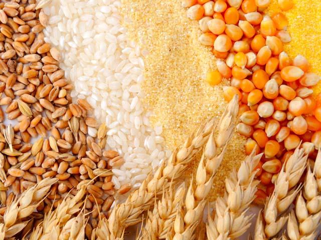 Недоброкачественные крупы не допущены для социального питания