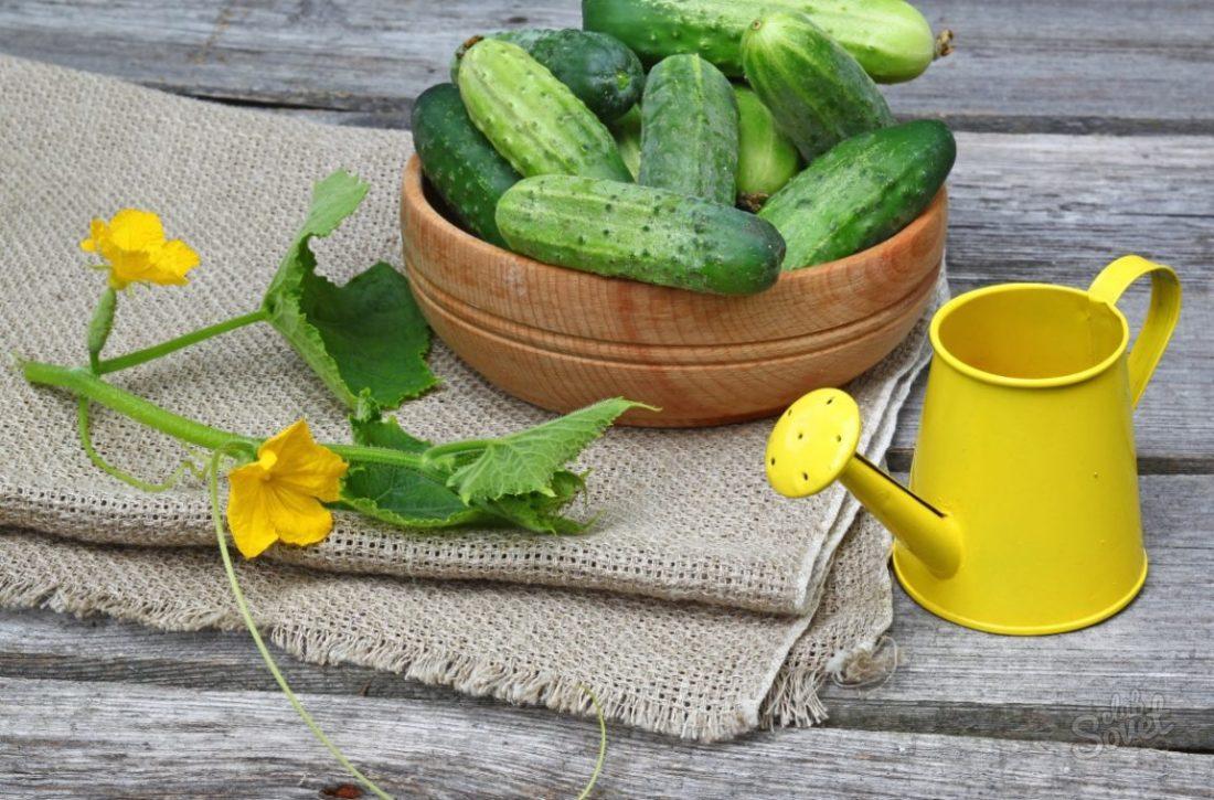 Диета Беверли Хиллз — минус 8 кг за 35 дней (картофель, кукуруза, салаты и др.)