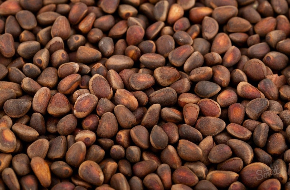 Полезность и вред кедровых орехов изоражения
