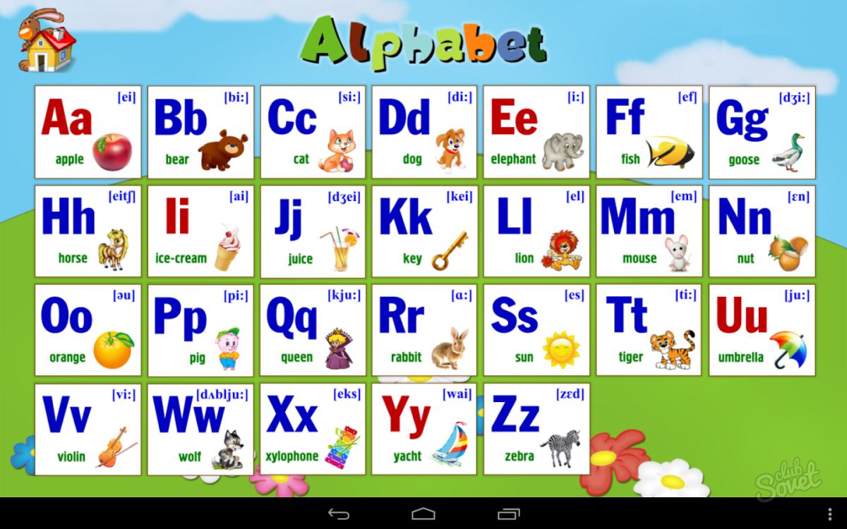 брокколи пригодны учим английский с нуля в картинках просто